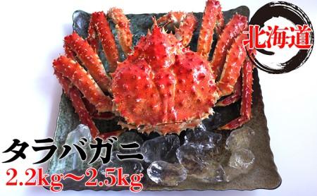 北海道太平洋岸前浜産タラバガニ(姿)2.2kg~2.5kg