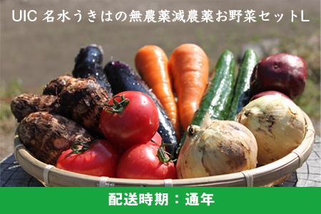 K332-L UIC 名水うきはの無農薬減農薬お野菜セットL