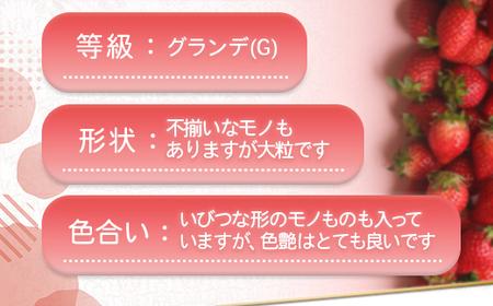 TY017「先行予約」福岡県産 あまおう 1500g(250g×6パック)2022年2月~4月にかけて順次発送予定