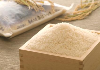 雪蔵工房 幻の米 おぼろづき(10kg)