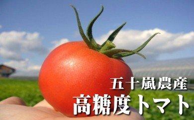 糖度8%以上☆特選トマト1kg(桃太郎CFファイト)
