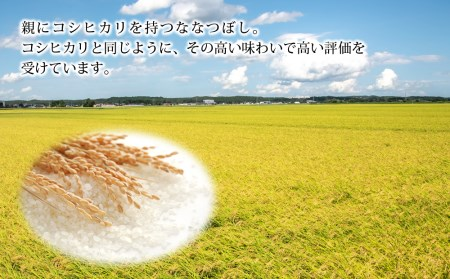 【先行受付】令和3年北海道産 特Aランク ななつぼし10kg(5kg×2袋)【美唄市産】