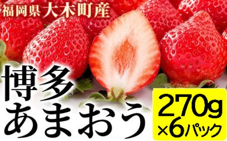 福岡県産あまおういちご約270g×6パック(2月中旬~3月末発送)・02-AC-2901