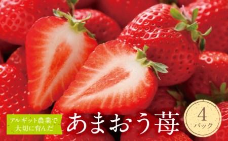 F17-02 アルギット農業「あまおう苺」(4パック)