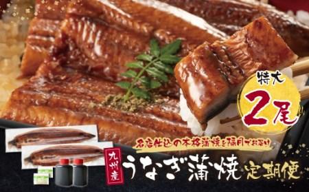 F02-16 割烹たちばな 極みうなぎ蒲焼2尾定期便(隔月・年6回)