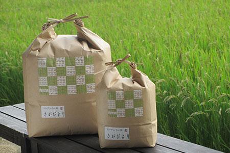 B048【米農家の定期便】 さがびより 5kg×6カ月