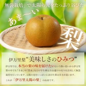 B161伊万里梨自宅用「豊水」(5kg)