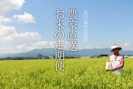 F100-051 【定期便】(12ヶ月連続お届け) 北川農産直送、お米の定期便(5kg×12回)