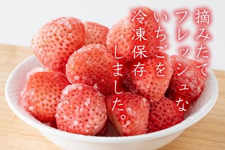 B10-116新品種 いちごさん(冷凍2kg)藤川農園