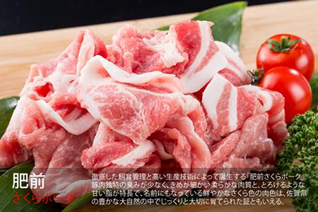 H-2 【限定150口】「佐賀牛」プラス「肥前さくらポーク」フルコース