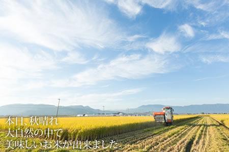 G120-102 【定期便】 (12ヶ月連続お届け) しもむら農園直送 お米の定期便 5kg×12回 12万円コース