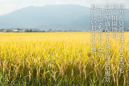 B15-075 佐賀ブランド米「さがびより」10kg 1万5千円コース