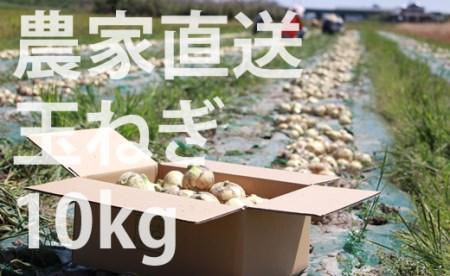 A5-041 農家さん直送タマネギ!使いやすいMサイズ(10kg) 5千円コース