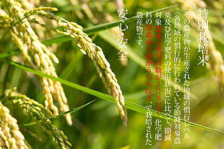D40-018 特別栽培米 ひのひかり 27kg(白米) 4万円コース