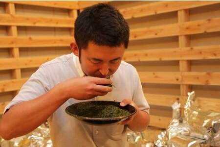 八女茶「極上煎茶」2本・九州銘茶「特上煎茶」八重2本飲み比べセット (H047101)