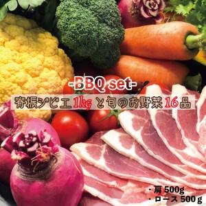 【37D01】背振ジビエ1kgと旬の野菜16品BBQセット