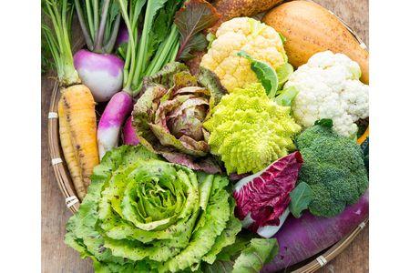 52L01 イタリア野菜セットラージ【頒布会】毎週、季節の野菜をお送りします(全48回)