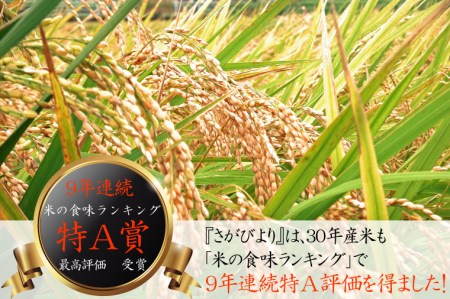 17B577 【H30年収穫米】佐賀県産『さがびより(精米10kg)』