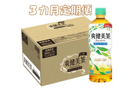 B-084F 3カ月定期便 爽健美茶 600mlPET(計72本)