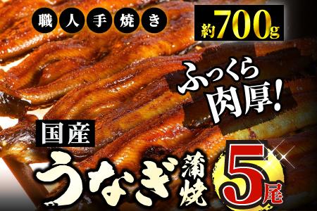 うなぎ蒲焼専門店「柳屋」国産うなぎ蒲焼 (約140g×5尾) D-426