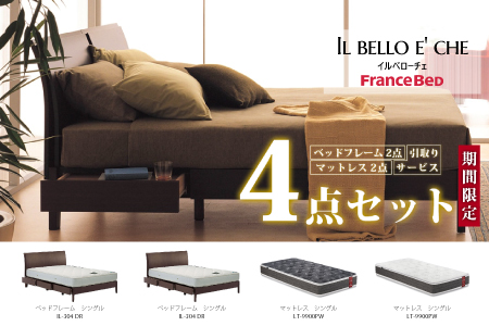 【フランスベッド4点セット】ベッドフレーム 2点(シングル) & マットレス 2点(シングル) Z-40