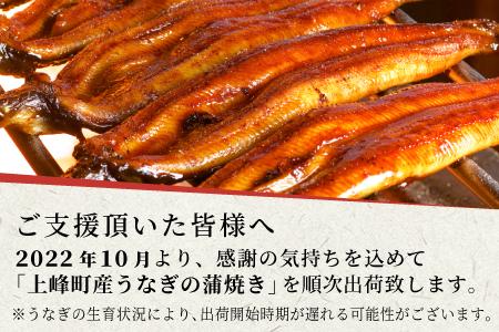 【稚魚から育てて来年お届け】180g×3尾!!『上峰産』うなぎの蒲焼 B-724