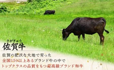 R-19 佐賀牛しゃぶしゃぶ・すき焼きセット(年6回)