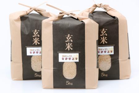 平成30年産「さがびより(玄米)」 15kg 寄付金額:20000円