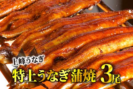 「厳選うなぎの特上蒲焼き」 2尾 寄付金額:10000円