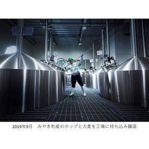 AI003_みやき神バナナプレミアムエール1ケース(24本)