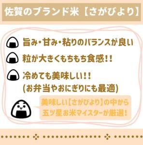 CI041_さがびより白米5㎏ 【五つ星お米マイスター厳選!】