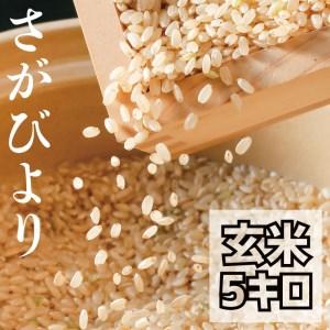 BG101_【老舗米屋の店長厳選】有機肥料を使った さがびより 玄米5㎏