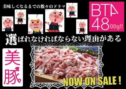 豪快特大盛り!九州産豚4800g切落し