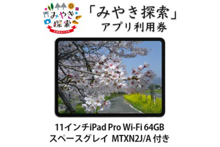 AI-29B 【2018年モデル】  みやき探索アプリ利用券 (11インチiPad Pro Wi-Fi 64GB - スペースグレイ MTXN2J/A 付き)