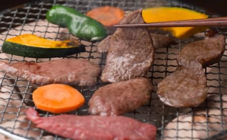【上撰】佐賀牛・県産和牛 極味肉定期便(限定30件)