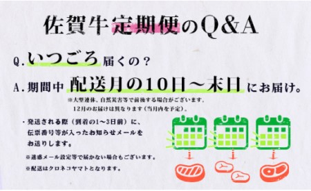 N100-9【偶数月にお届け!】佐賀牛 定期便 通年6回コース(2019)