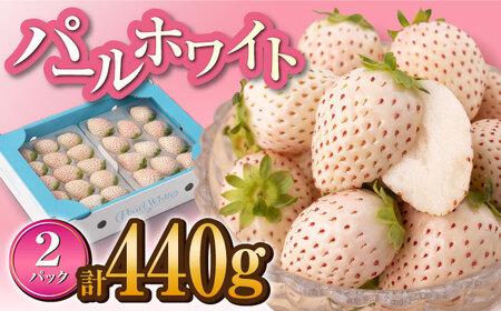 【M-12】白石産いちご「パールホワイト」