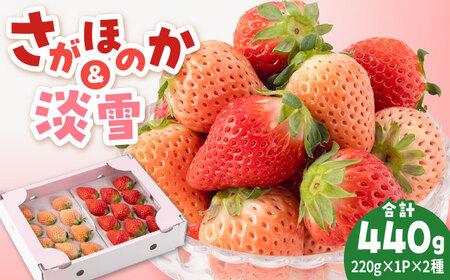 【先行予約】淡雪&さがほのか赤白いちごセット各220g [IAP007]