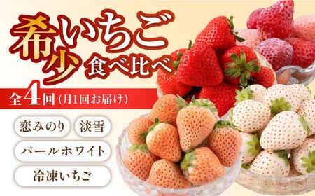 【D-13】白石産希少いちご定期便(全4回)