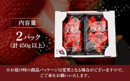 【際立つ甘さ!】激レアいちご『咲姫』(250g×2パック)【中村いちご農園】 [ICB001]