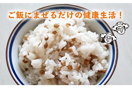 【A-24】白石産 もち麦