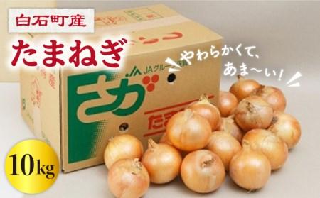 【A-8】白石産 たまねぎ(10kg)