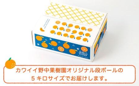 【1月上旬以降発送】ハウス完熟早生みかん 約5キロ箱 [LEJ001]