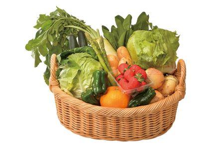 20-098 安心の地元野菜と果物のお任せセット