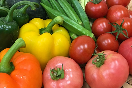 ふるさと納税 野菜 定期便
