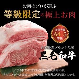 S001-001_黒毛和牛 切り落とし 1kg A4~A5ランク