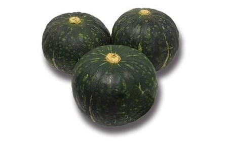 農家直送 有機栽培 かぼちゃ 5kg