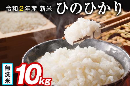 令和元年 新米ひのひかり 5kg×2袋 10kg 熊本県産 無洗米