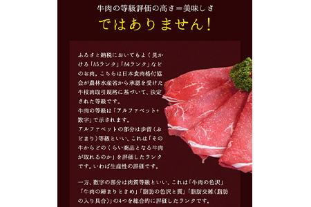 熊本の和牛 あか牛 切り落とし 1kg 500g×2パック 熊本県産 肉 和牛 牛肉 赤牛 あかうし《5月上旬-6月下旬頃より順次出荷》