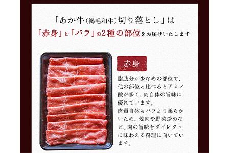 熊本の和牛 くまもと和牛 切り落とし 1.1kg《9月末-10月下頃より順次出荷》熊本県産 肉 和牛 牛肉